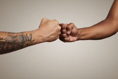 Close up shot of a fist bump. Friends do a fist bump close up isolated on white royalty free stock image