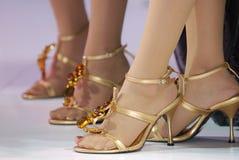 Close-up shot of foot of women. Beautiful shoe on woman feet Stock Photos