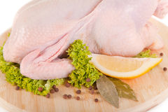 Close-up shot of fresh raw chicken with condiments Royalty Free Stock Photography