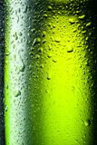 Close up shot of frosty beer bottle Royalty Free Stock Photo