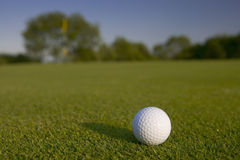 Close up shot of a golf ball on a green. With an out of focus flag in the background Stock Photography