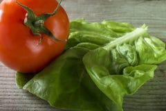 Close up shot of green salad and tomato Royalty Free Stock Photo