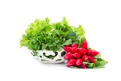 Close up shot of greens and radish in white bowl royalty free stock photography