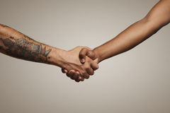 Close up shot of a handshake royalty free stock photos