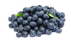 Close up shot of heap of bilberry royalty free stock photography