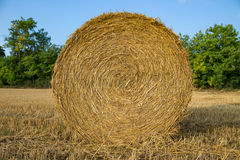 A close-up shot of a large bail of hay Royalty Free Stock Photos