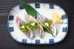 Lightly Broiled Pacific Saury Sushi. Close Up Shot Of Lightly Broiled Pacific Saury Sushi on a dining table royalty free stock image