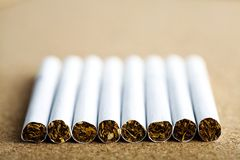 Line of cigarettes Royalty Free Stock Images