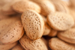 A close up shot of lot of almond nuts royalty free stock photos