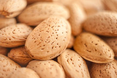 A close up shot of lot of almond nuts stock photo