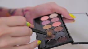 Close up shot. Make-up artist taking eye shadows from makeup eyeshadows palette stock video