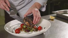 Close up shot of a man`s hands, who is engaged in serving dishes for dinner. Close up shot of the man`s hands, the person puts a piece of trout on a plate with stock video footage
