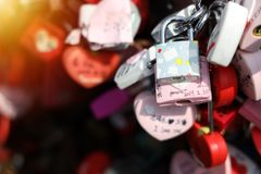 Close up shot of many locks it on side wall at Seoul Tower stock image