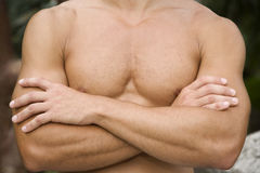 Close up shot of a muscular man's chest and arms. Stock Photo