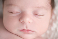 Close-up Shot of a Newborn Baby Boy's Face Stock Photography