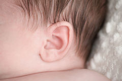 Close-up Shot of a Newborn Baby's Ear Stock Photo
