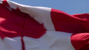 Close up shot on picturesque red white maple flag national symbol banner of Canada waving in wind on blue sky background. Close up shot on fascinating red white stock video