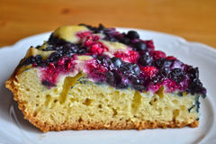 Close-up shot of piece of tasty cake with wild berries Stock Image