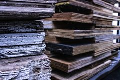 Close up shot of pile of wooden planks in humidity stock photography