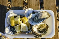 Close up shot of plate of fresh raw oyster. Server with lemon, ate at Brighton, United Kingdom Stock Photo