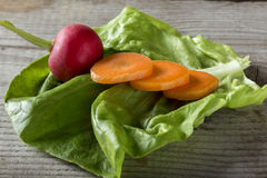Close up shot of radish and sliced carrots on a salad leaf Royalty Free Stock Images