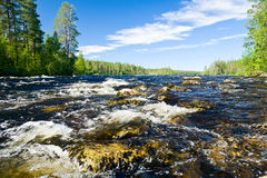 Rapids on a river Royalty Free Stock Image