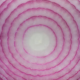 Close-up shot of a red cut onion Stock Photos