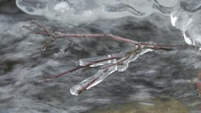 Close up shot of running streams of clean ice water. Beautiful landscape. Tranquil scene. Close up shot of running streams of clean ice water. Spring has come stock video