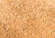 Close up shot of sawdust texture. Stock Image