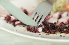 Close up shot of seafood octopus delicacy plate Stock Image