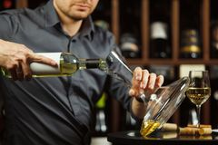Close up shot of serious sommelier pouring white wine in decanter. Close up shot of serious sommelier pouring white wine from opened bottle in decanter to Royalty Free Stock Photo