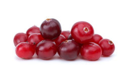 Close-up shot of some cranberries. Isolated on the white background Royalty Free Stock Image