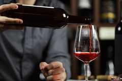 Close up shot of sommelier pouring red wine from bottle in glass stock images