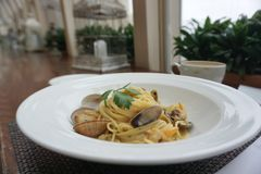 Spagetti white sauce with fresh clams. Close up shot of Spagetti white sauce with fresh clams Royalty Free Stock Images