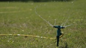 Close-up shot of the sprinkler watering the lawn. stock video
