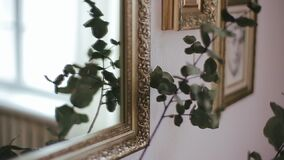 Close-up shot of stem with eucalyptus leaves, which is reflected in mirror with a golden frame on the background. Flower