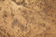 Close-up shot of stone texture Stock Photography