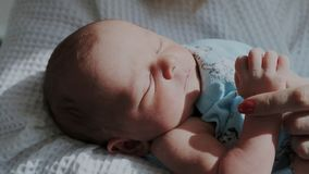 Close-up shot of sweet sleeping little baby. Newborn moves his eyes in a dream. Parent holding and caresses babys hand. Caring mother with baby, Concept of stock footage