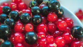 Close up shot of the table with berries. Close shot black tea cup cap capp cappuccino cookies tab tabl table wot woth wit ber berr berri berrie berries stock image