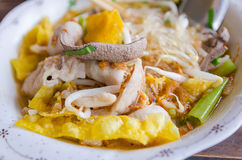 Close up shot - thai noodle with yellow fried wonton Royalty Free Stock Photo