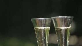 Close-up shot of two glasses of champagne with floating up bubbles at the blurred green background. Close-up shot of two glasses of champagne with floating up stock footage