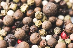 Peppercorns. Close-up shot of various spicy peppercorns Royalty Free Stock Photography