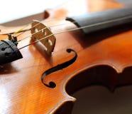 Close up shot of violin Stock Image