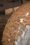Close-up shot of wheel in dirt. Stock Image