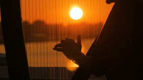 Woman silhouette playing harp at sunset stock video