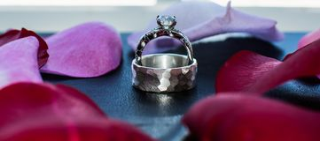Diamond Wedding Rings surrounded by red rose petals royalty free stock image