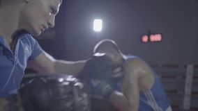 Close up shot of young male boxer athlete fighter personal coach practicing workout training punch hook kick boxing ring. Close up shot of young male athlete stock footage