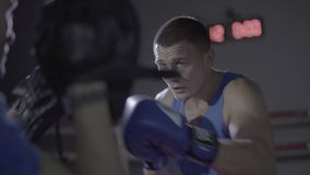 Close up shot of young male athlete boxer fighter personal coach practicing workout training punch hook kick boxing ring. Close up shot of young male athlete stock footage