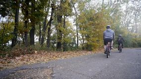 Close up shot of young woman on a bicycle in the autumn park. slow motion.  stock video footage