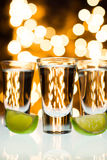 Close up Of Shots Glass and Limes with Bokeh Backg Stock Photo
